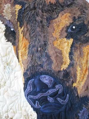 buffalo_closeup2